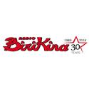 http://www.birikina.it/
